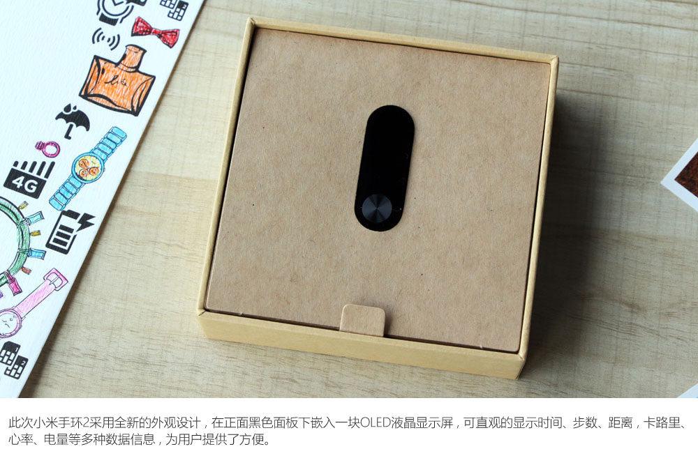 Xiaomi MI Bind 2 4