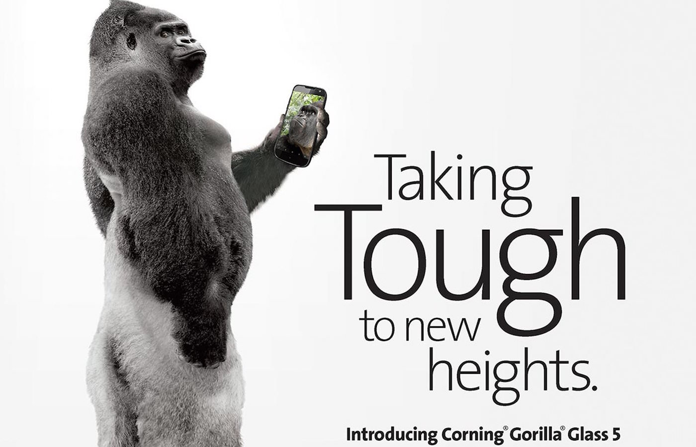 Gorilla Glass 5 6