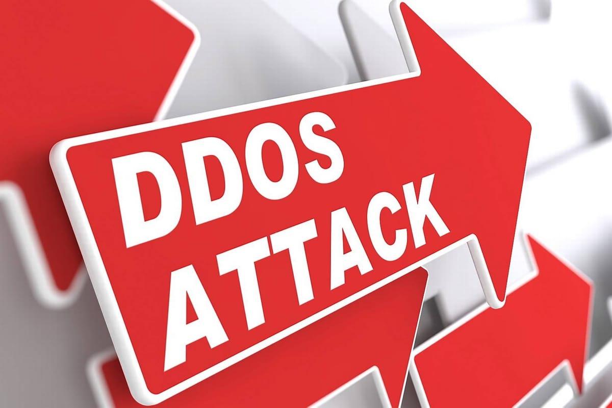 DDOS 24