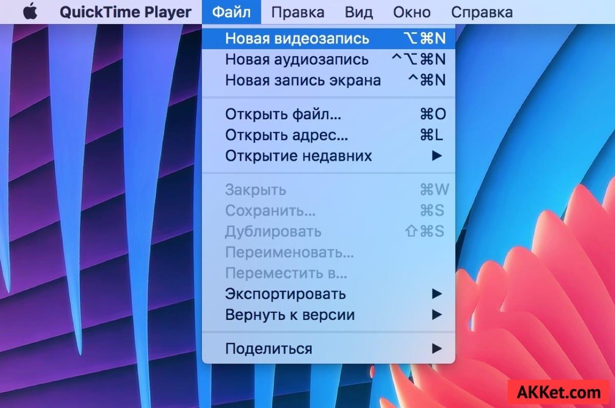 Screen Record iOS 10 iOS 11 Guide Russia 4