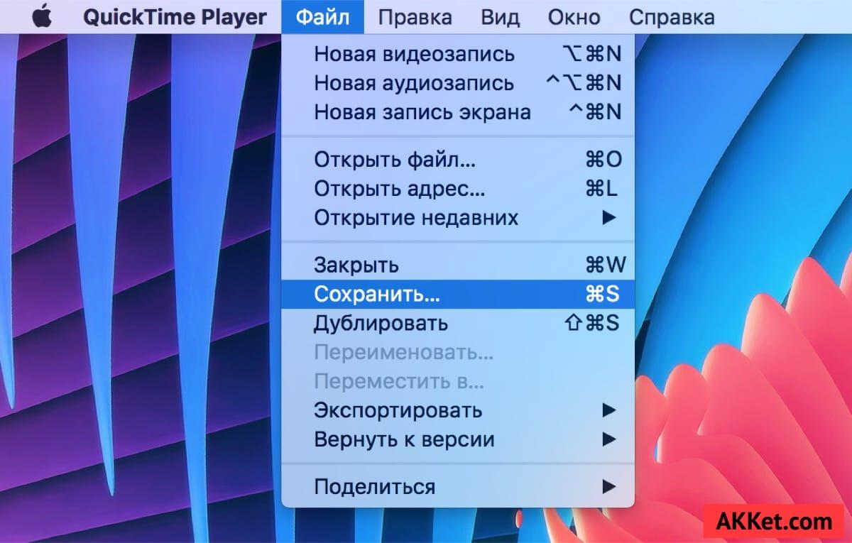 Screen Record iOS 10 iOS 11 Guide Russia 5
