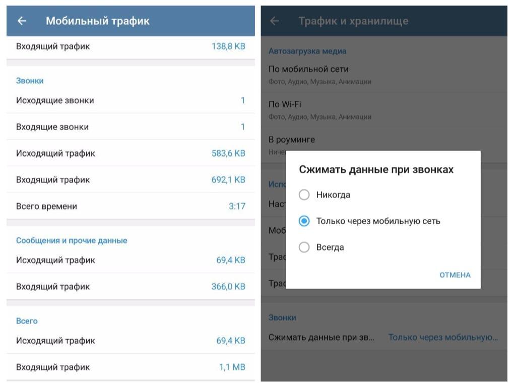 Telegram Russia iOS Voice Call
