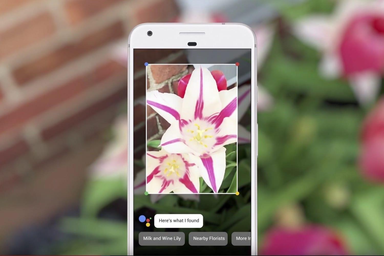 Google выпускает приложение Lens для всех